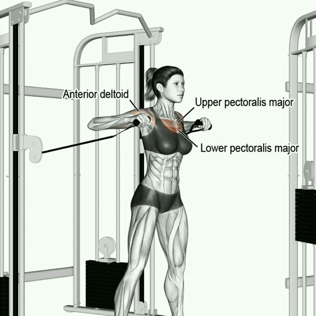 How to do: CM Standing Reverse Chest Press - Step 1