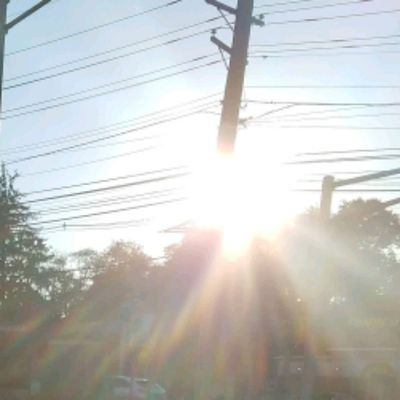 Qi Gong 45 Minute Garripoli Video
