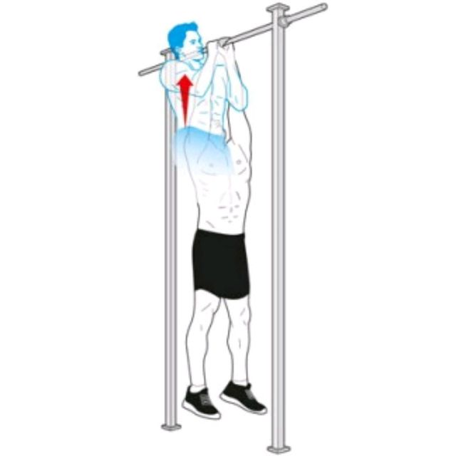 How to do: Commando Pull Up - Step 1