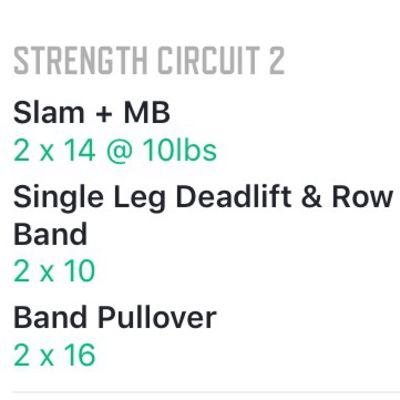 Strength Circuit 2