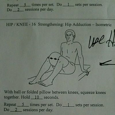 Isometric Hip Adduction