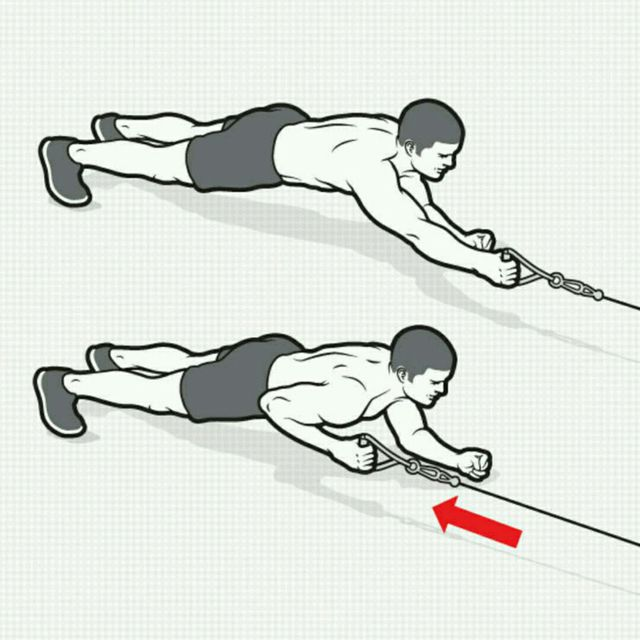 How to do: CM Plank Rows - Step 1