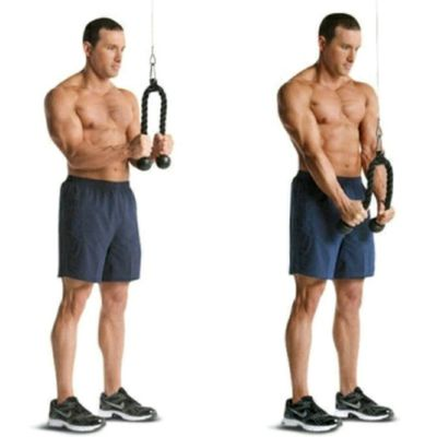 Tricep Rope Pushdowns