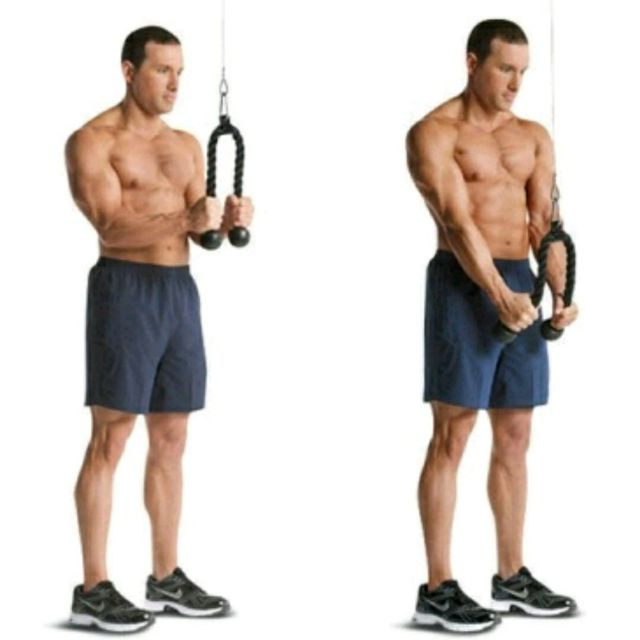 How to do: Tricep Rope Pushdowns - Step 1