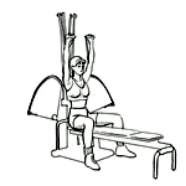 How to do: Bowflex Shoulder Press - Step 2