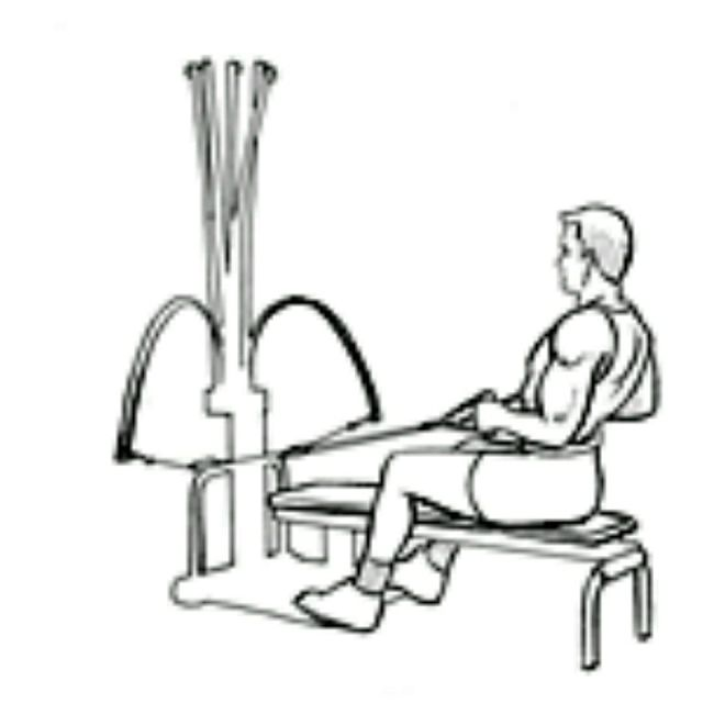 How to do: Bowflex Seated Lat - Step 2
