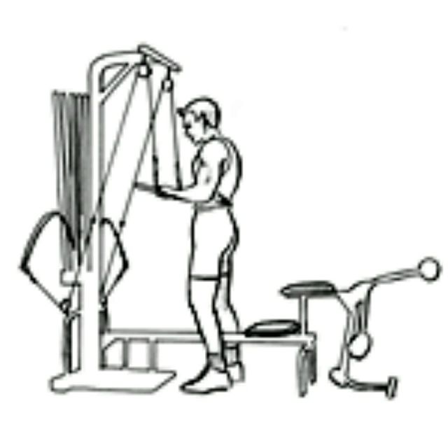 How to do: Bowflex Tricep Pushdown - Step 1