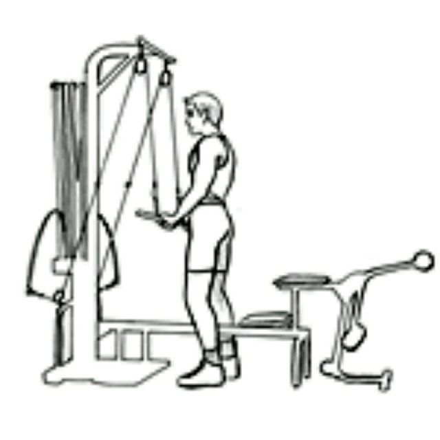 How to do: Bowflex Tricep Pushdown - Step 2