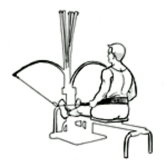 How to do: Bowflex Leg Press - Step 2