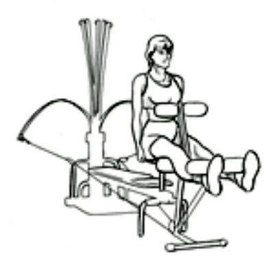 Bowflex Leg Ext