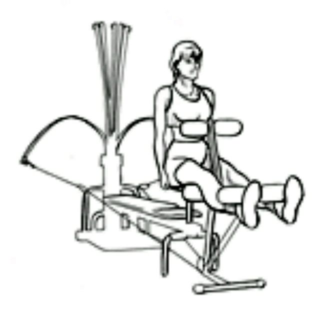 How to do: Bowflex Leg Ext - Step 2