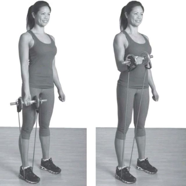 How to do: Dual Resistance Biceps Curl - Step 1
