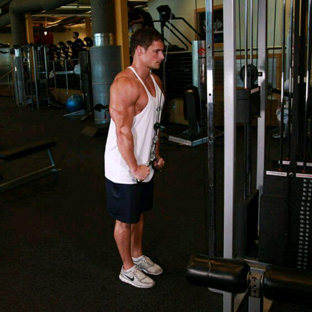 How to do: Triceps Pushdown - V-Bar Attachment - Step 2