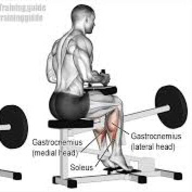 How to do: Seated Calf Raise - Step 1
