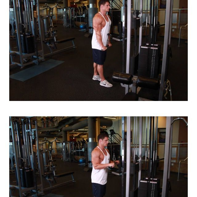 How to do: Cable Tricep Push Dn - Step 1