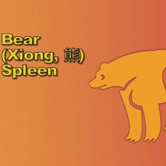 Five Animals Sport - Bear 1&2 Spleen 9-11AM