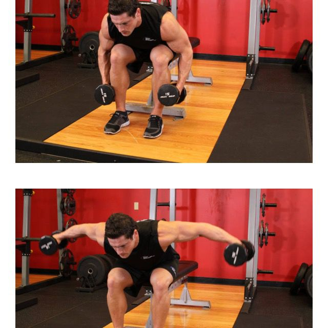 How to do: Seated Bent Rear Delt Raise - Step 1