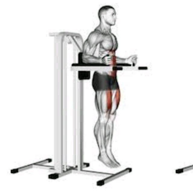 How to do: Knee Raise on Dip Bars - Step 1