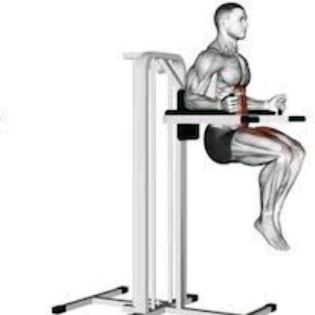 How to do: Knee Raise on Dip Bars - Step 2
