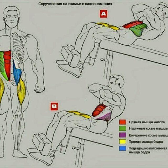 How to do: Скручивания На Наклонной Скамье - Step 1