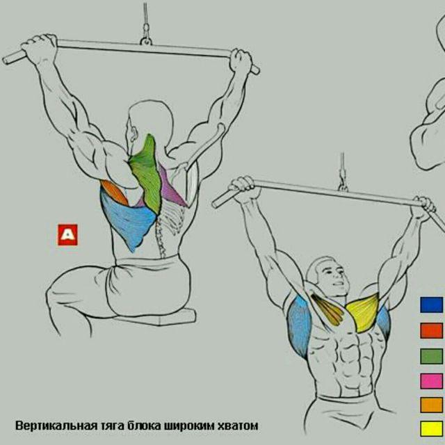 How to do: Тяга Верхнего Блока К Груди - Step 1