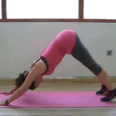 ALTERNATING  Down Dog Knee To Elbow Swings (3 Each, Switch)
