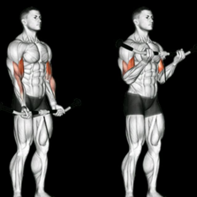 How to do: Biceps Cable Curl - Step 1