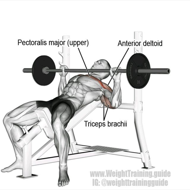 How to do: Incline Bench Press - Step 1