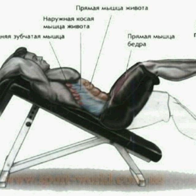How to do: Подъем Ног На Скамье - Step 2