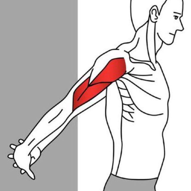 How to do: Arm Stretch - Step 1