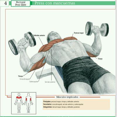 Ciclo 2 - Programa Power Semana 1 - Día 1 Pecho, Triceps