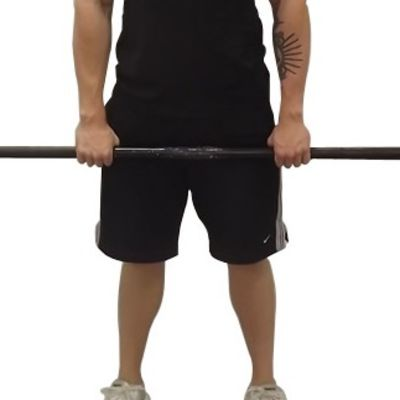 Forearm Extensor Reverse Barbell Roll