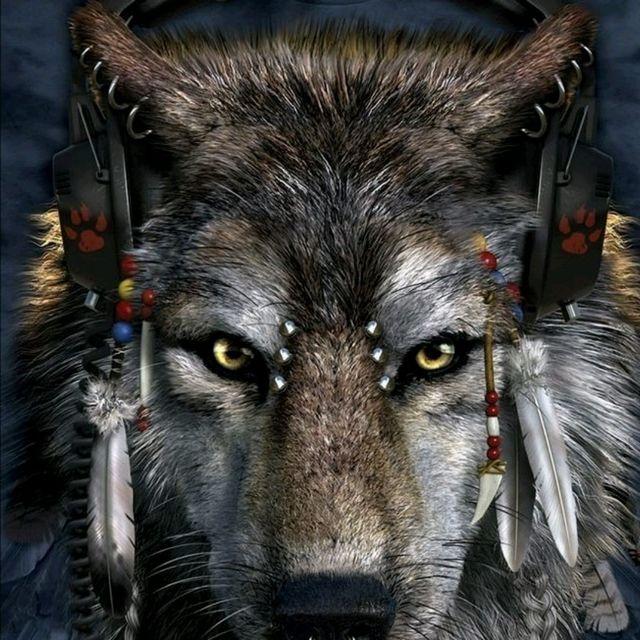 Gray Wolf Fitness