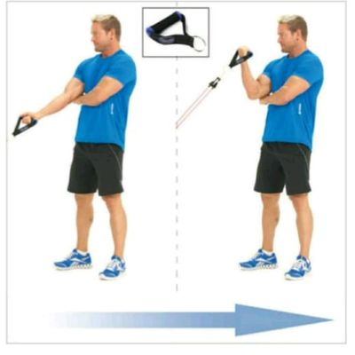 Concentrated Bicep Curls with resistance bands