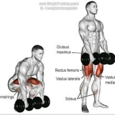 Dumbbelll Deadlift