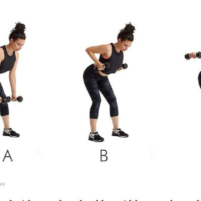 Bent Over Row/fly Combo