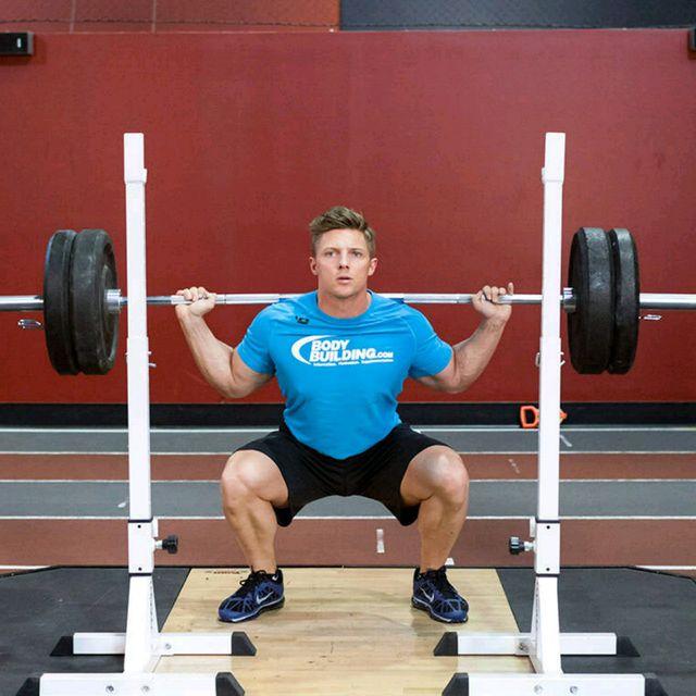 Back/Legs/Biceps-V1