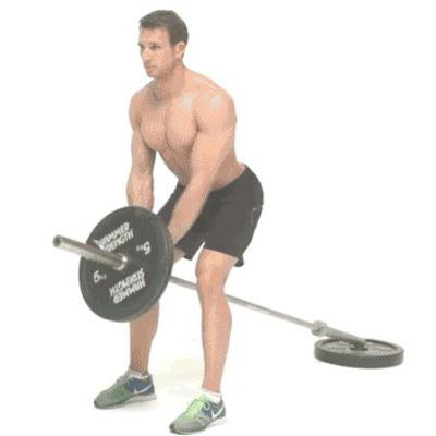 Bent Over T-Bar Rows