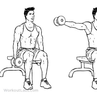 Seated Shoulder Lateral Raise