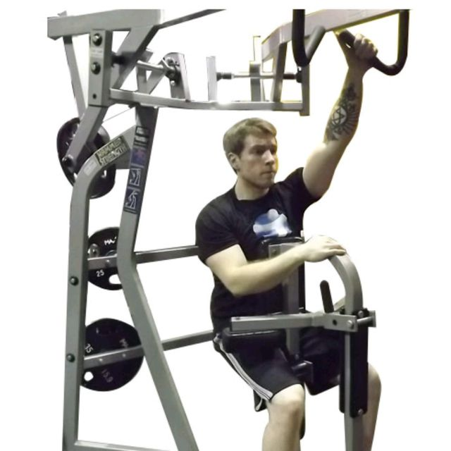 Back/Biceps-V2