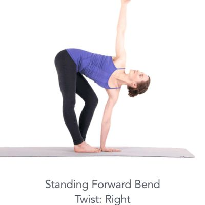 Standing Forward Bend Twist Right