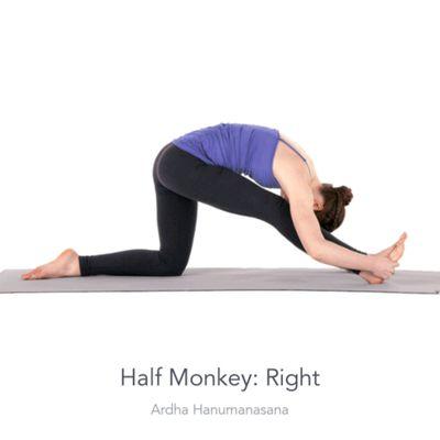 Right Half Monkey