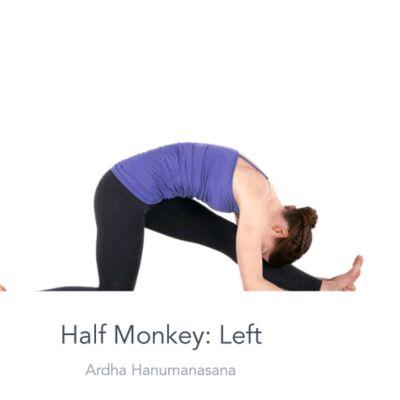 Left Half Monkey