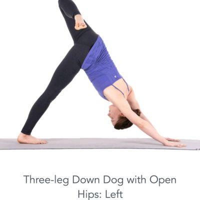 3-legged Dog With Open Hips Left