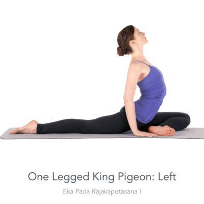 Left Upright Pigeon