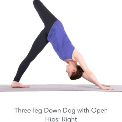 3-legged Dog With Open Hips Right