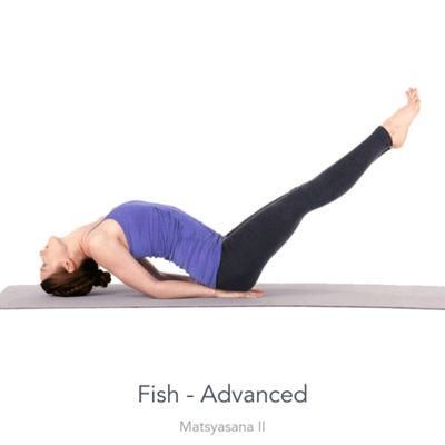 Advanced Fish