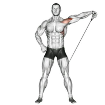 Cable Side Lateral - Double Drop (Each Arm)