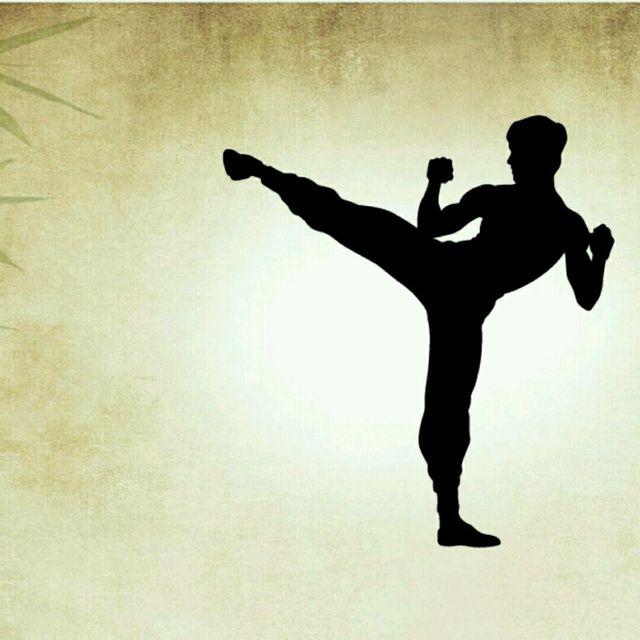 Kung fu training Class *WDC*
