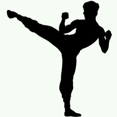 High Kicks and Punches